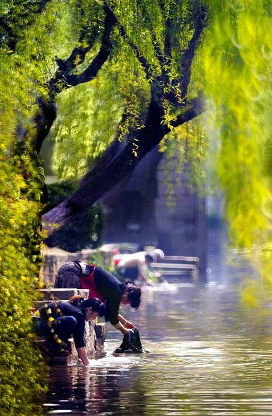 springhascome_33.jpg