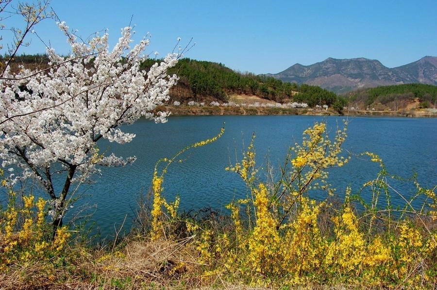 springhascome_47.jpg