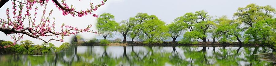 springhascome_72.jpg